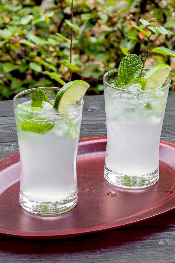 The amazing mojito, the most refreshing drink of the summer