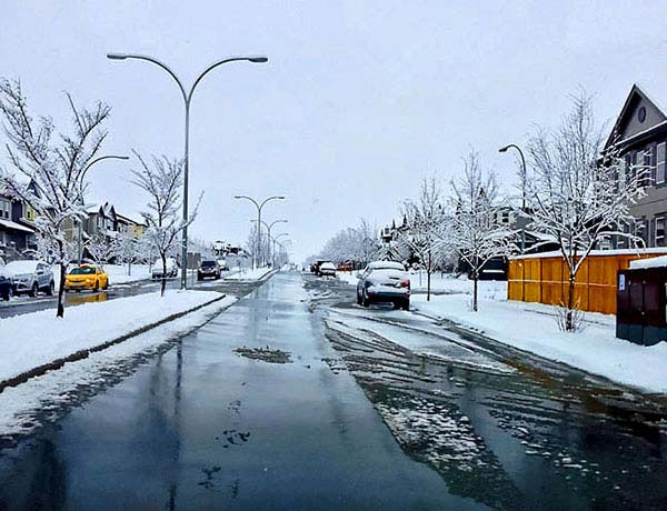 Calgary May Winter